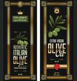 green olive oil elegant background vector image vector image