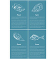 mollusk and bream fish set vector image vector image