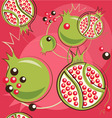 pomegranate pattern vector image