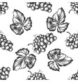 seamless pattern with black and white grapes vector image