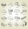 sketch of different cheeses icons vector image vector image