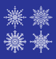 snowflakes collection closeup unique ice crystals vector image vector image