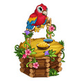 tropical parrot sits on a beautiful wooden perch vector image vector image