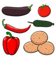 vegetables hand drawn colored sketch vector image vector image