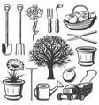 vintage garden elements collection vector image vector image