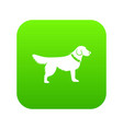 dog icon digital green vector image