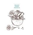 Hand Drawn Decorative Flower Basket vector image vector image