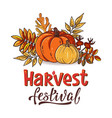 harvest festival hand drawn lettering text vector image vector image