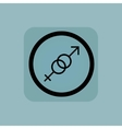 Pale blue gender sign vector image vector image
