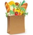 Paper bag with food vector image vector image