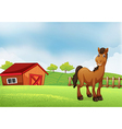 A horse at the farm vector image vector image