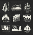 camping badges mountains coniferous forest and vector image vector image