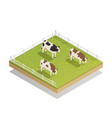 dairy pasture isometric composition vector image vector image