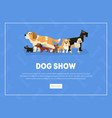 dog show banner landing page template pet show vector image vector image