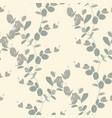 eucalyptus silver tree foliage natural branches vector image