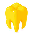 gold tooth icon isometric style vector image vector image