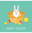 Happy Easter Cute bunny rabbit chicken and eggs vector image vector image