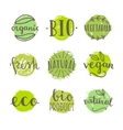 Set of bio vegan food badges vector image vector image