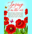 spring poster of poppy flowers bloom vector image vector image
