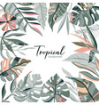 tropical frame with palm leaves exotic vector image