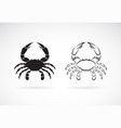 two crab on white background animals crab icon vector image vector image