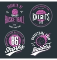 Basketball ball or sport game t-shirt design vector image vector image