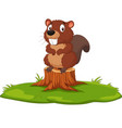 cartoon beaver on tree stump vector image vector image