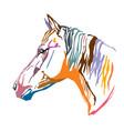 colorful decorative portrait horse-2 vector image vector image