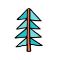 drawing of a christmas tree spruce or fir drawn