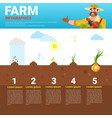 farming infographics eco friendly organic natural vector image