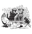 hen eating bread vintage vector image vector image