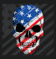 human skull head with american flag pattern vector image