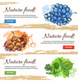 natural food hand drawn banners vector image