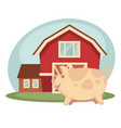 pig standing on farm vector image