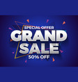 special offer grand sale banner background vector image vector image