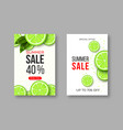 summer sale banners with sliced lime pieces vector image vector image