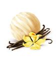 vanilla ice cream scoop realistic vector image vector image