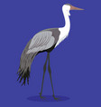 wattled crane cartoon vector image vector image