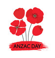 anzac day bouquet of poppy flowers vector image vector image