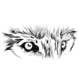 beautiful Wolf face vector image