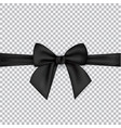 black silk ribbons and bow isolated on a vector image vector image