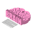 Brain structure of infographics Brains headache vector image