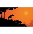 Dinosaur Tyrannosaurus on the cliff scenery vector image