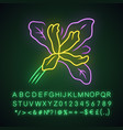 douglas iris plant neon light icon california vector image