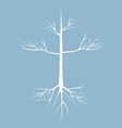 dry tree with root vector image vector image