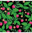 Raspberries seamless pattern with raspberry and vector image