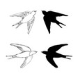 set of the swallow icons design elements for vector image vector image