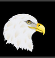 stylized bald eagle head vector image