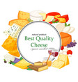best quality special cheeses realistic vector image vector image