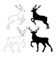 deer drawing vector image